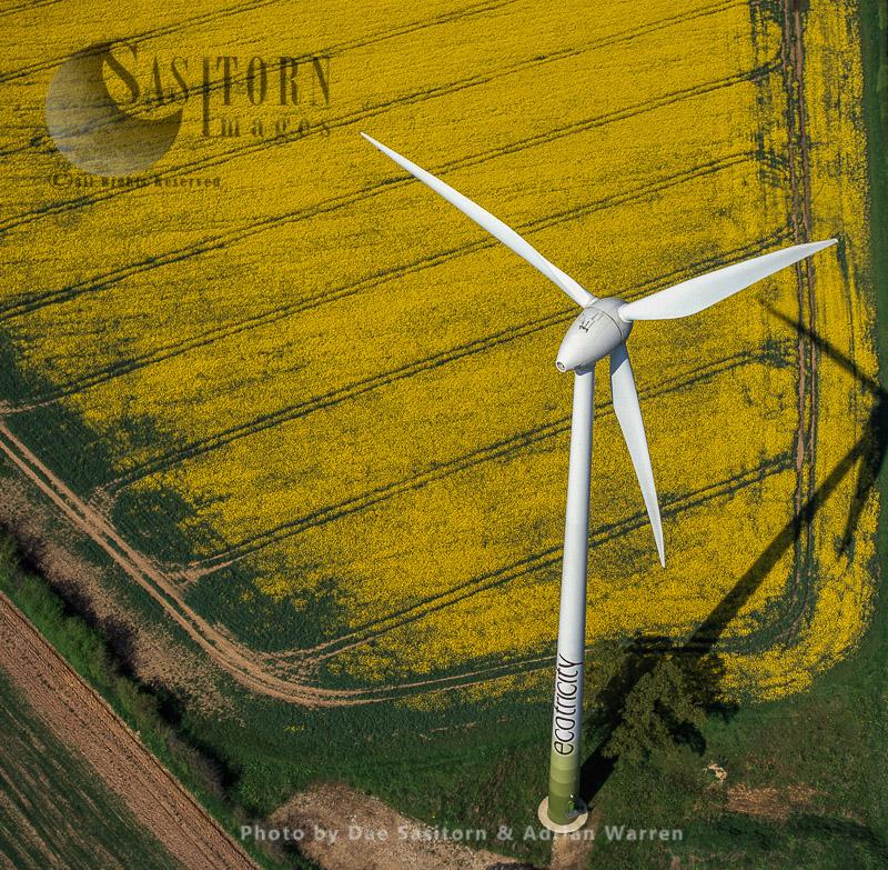 Wnd Turbine With Rape Field, Norfolk, East Anglia