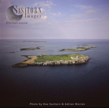 Farne Island, Northumberland