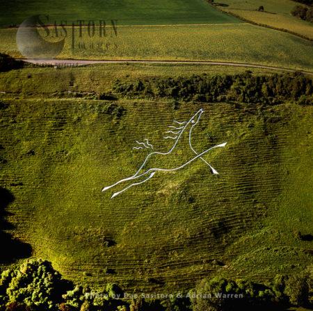 Folkestone White Horse, Kent