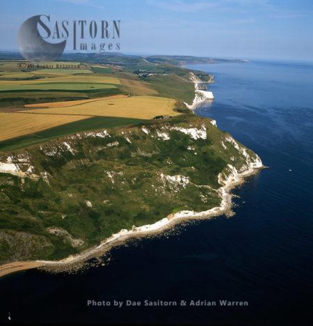 White Nothe, Jurassic Coast, Dorset