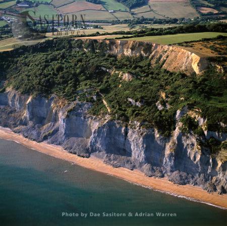 Eroding Cliffs Near Charmouth, Dorset