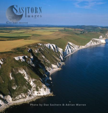 White Northe, Jurassic Coast, Dorset