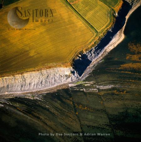 Kimmeridge Ledge, Jurassic Coast, Dorset
