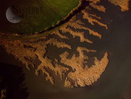 Mudflats On The River Yealm Estuary, Newton Ferrers, Devon