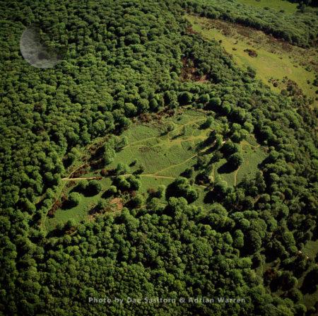 Hembury Hill Fort (Buckfastleigh), Iron Age, Dartmoor, Devon
