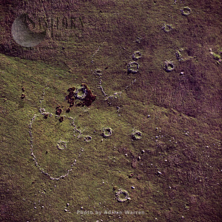 Bronze Age Hut Circles, Dartmoor
