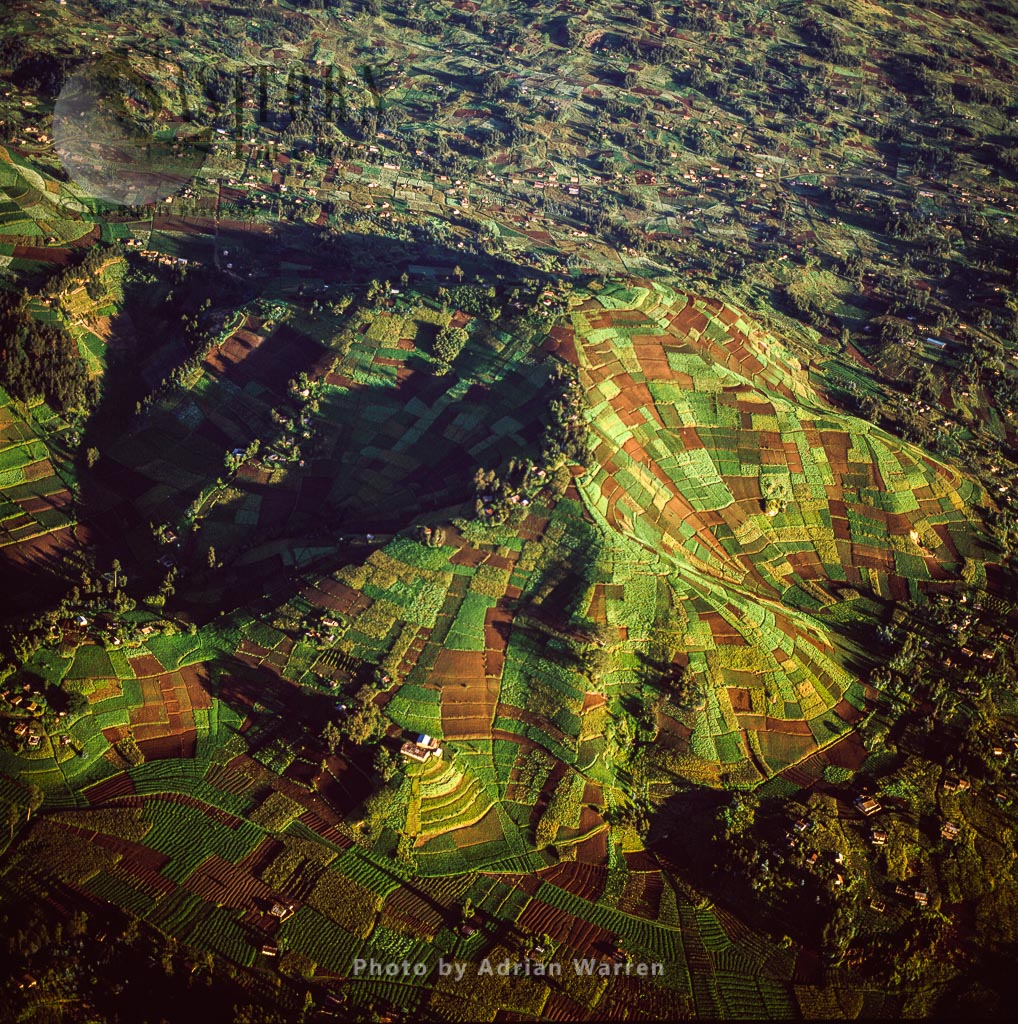Intensive Agriculture And Housing On Virunga Foothills, Rwanda