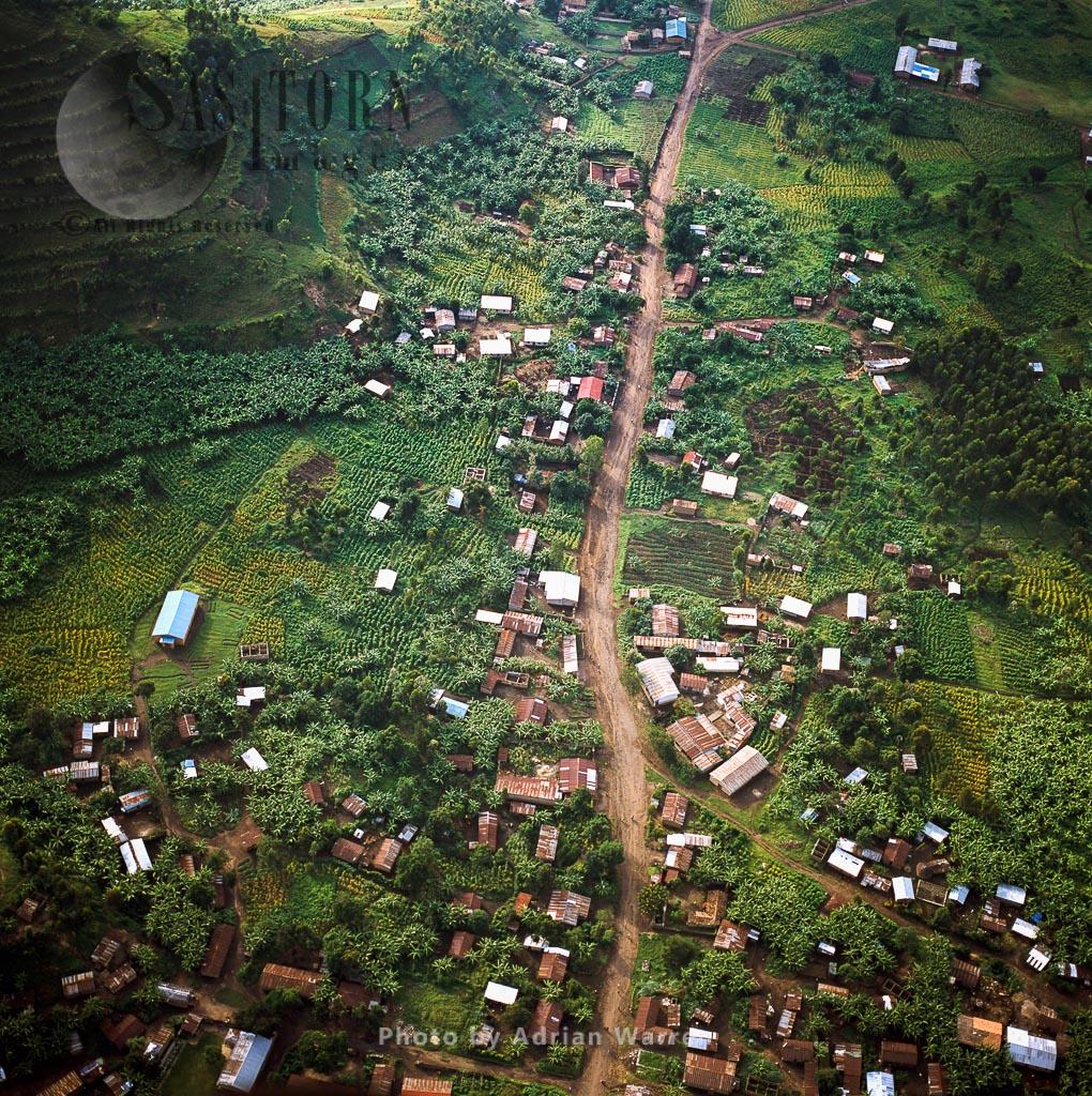 Intensive Agriculture On Virunga Foothills, Rwanda