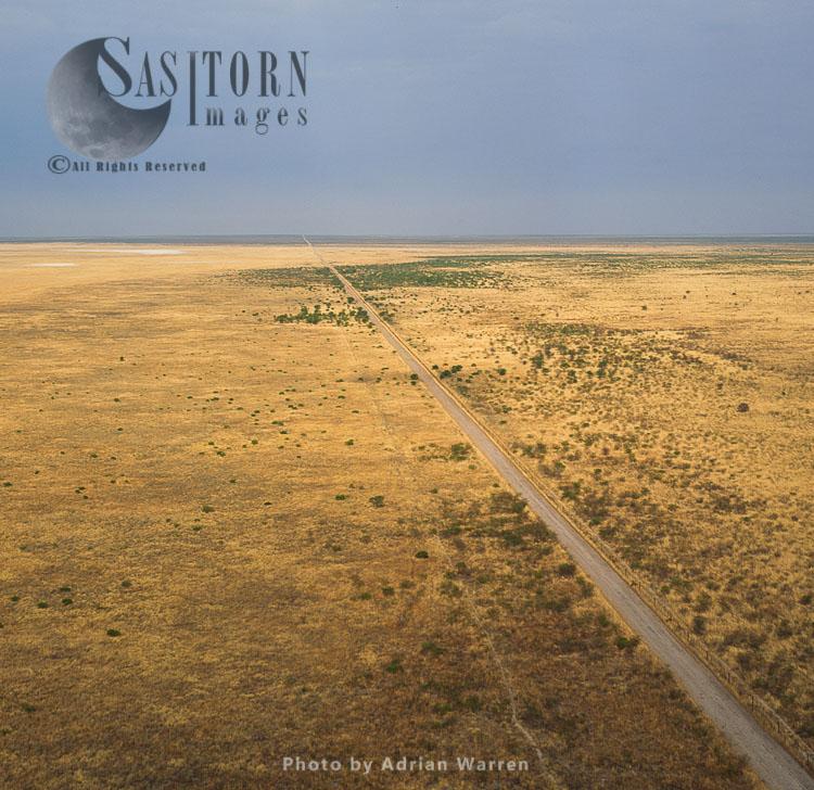 Savannah And Road In Etosha National Park, Namibia