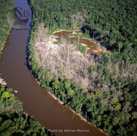 Dead Trees – Mining Damage, (Mazaruni Upstream From Kamarang), Upper Mazaruni District, Guyana