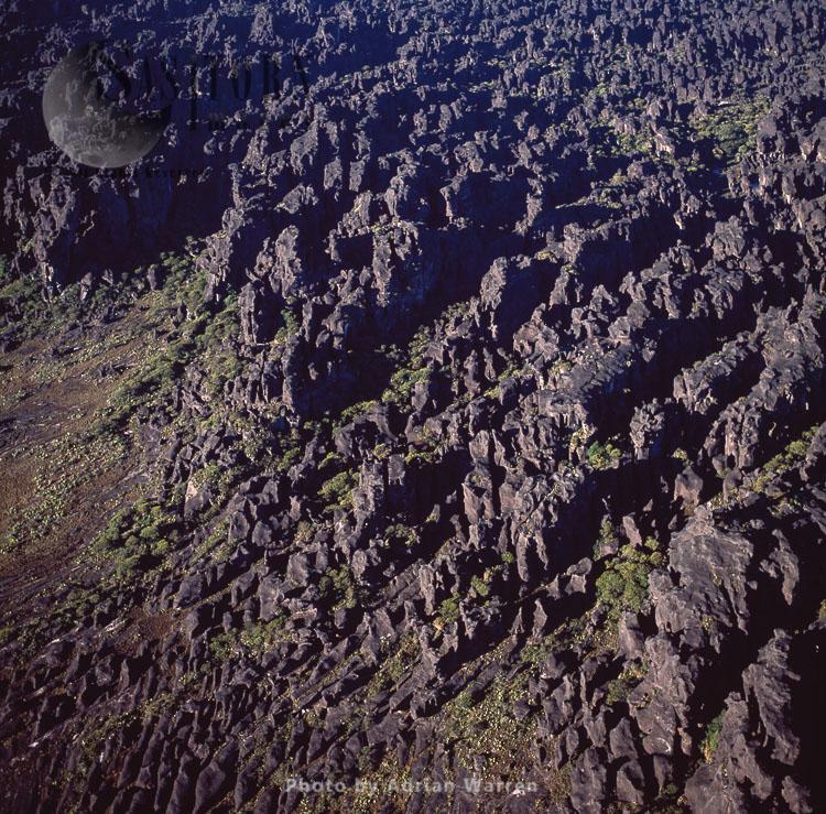 The Summit Of Mount Roraima, Tepuis Region, Canaima National Park, Venezuela