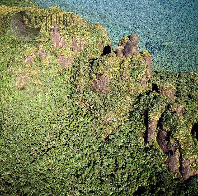 Mount Ayanganna, A Sandstone Tepui In The Pakaraima Mountains Of Western Guyana