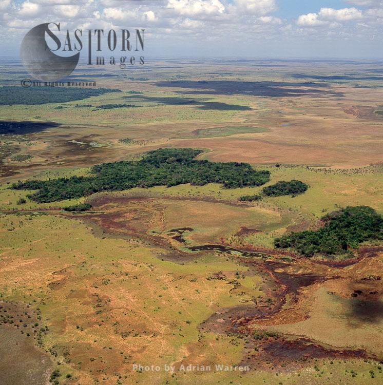 Rupununi Near Karanambo, South-west Of Guyana