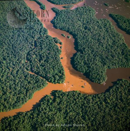 Islands In Lower Mazaruni River, With Rainforest, Guyana