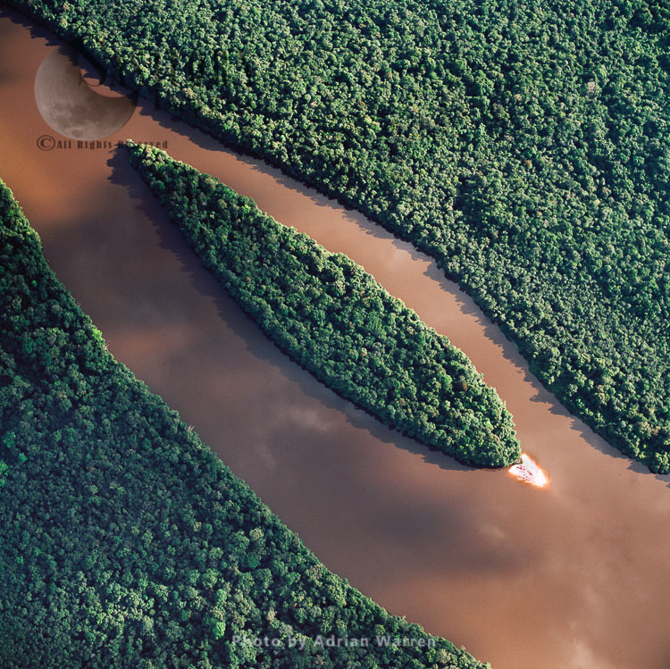 An Island On Lower Mazaruni River, With Rainforest, Guyana, South America