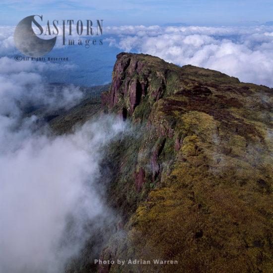 Ayanganna Mountain, Guyana, South America