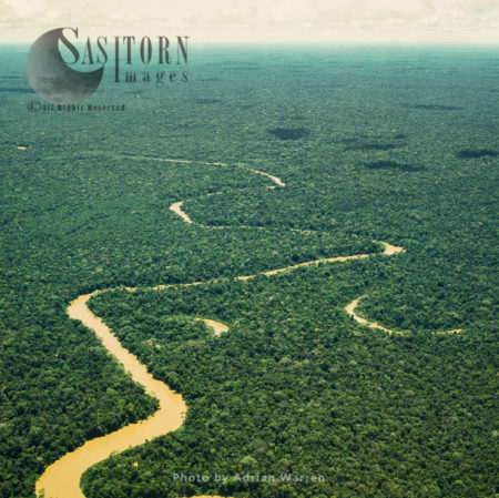 Ecuador Rainforest And River Cononaco - Part Of The Amazon Basin, Cononaco Area, South America, 2002