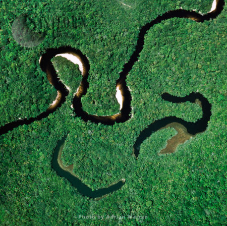 Aerial View Of Rain Forest With Caroni River And Ox-Bows, Venezuela