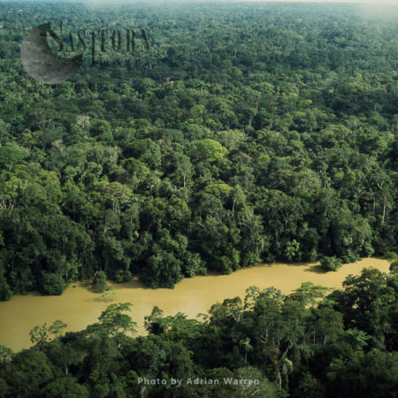 Ecuador Rainforest And River Cononaco - Part Of The Amazon Basin, Cononaco Area, South America, 2002