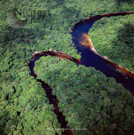 Aerial Image Of Guyana, South America: Confluence Of Paikwa River With Kako River, Upper Mazaruni District