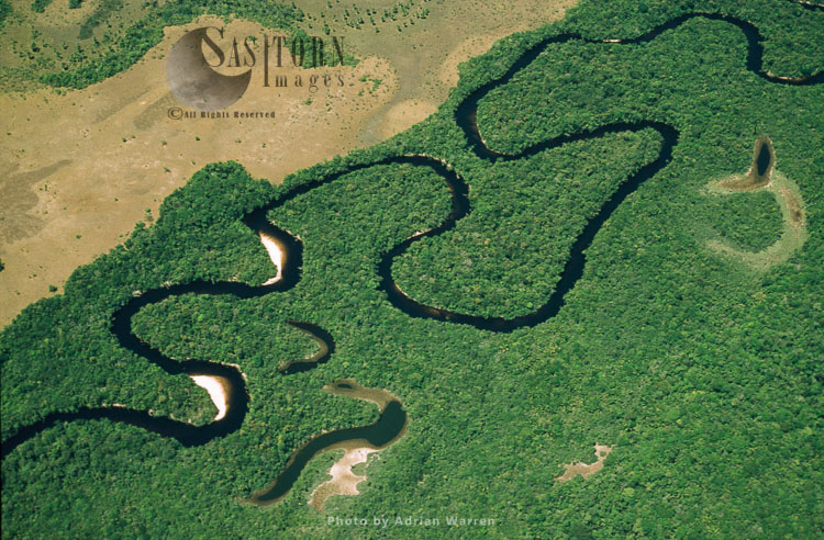 Rain Forest, River And Ox-bows. Rio Cucurital, A Tributary Of Rio Caroni, Just To The West Of Mount Auyantepui, Canaima National Park, Venezuela