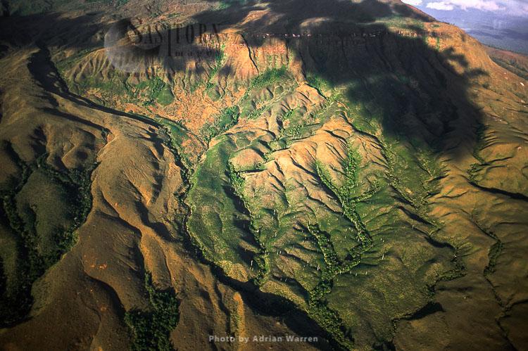 La Gran Sabana, Savanna ecoregion, Canaima National Park, Venezuela, South America