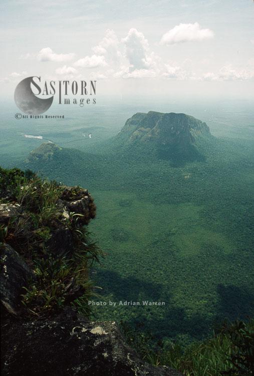A View From Mount Autana (Cerro Autana), Amazonas Territory, Tepuis, Venezuela, South America