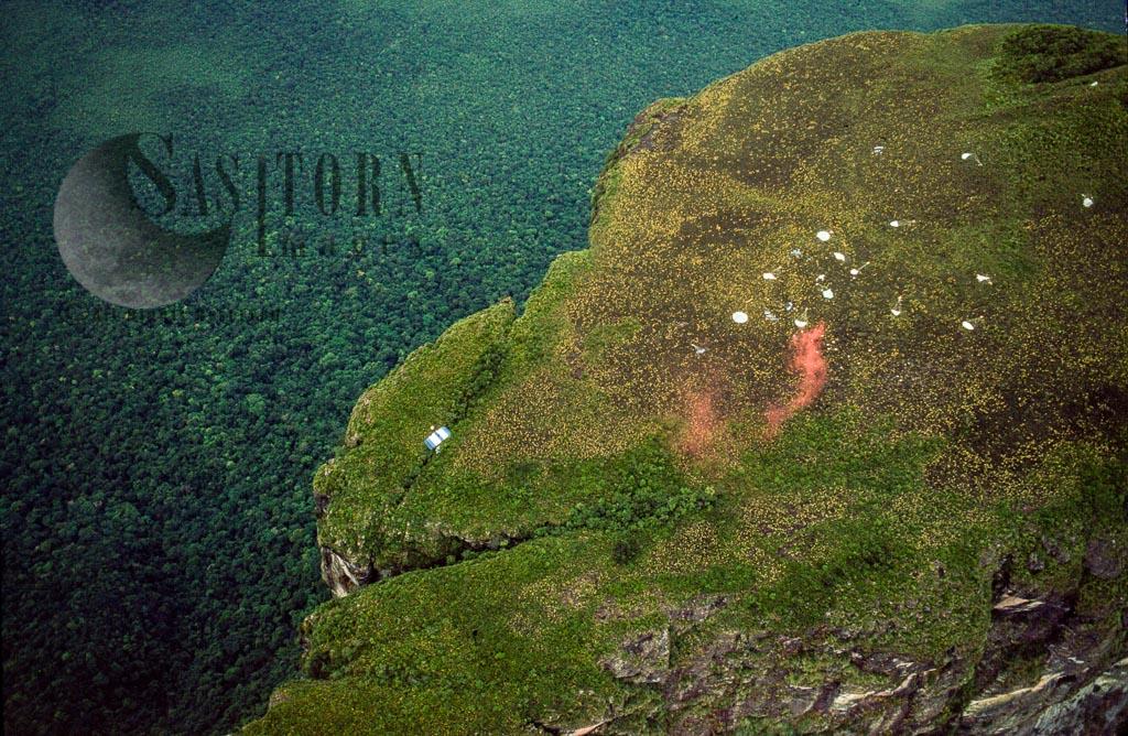 Mount Autana (Cerro Autana), Amazonas Territory, Tepuis, Venezuela, South America
