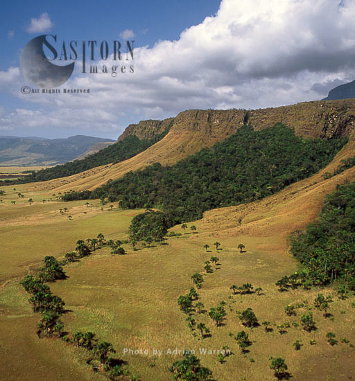 Mount Auyantepui (Auyantepuy, Devil's Mountain), Tepuis, Venezuela