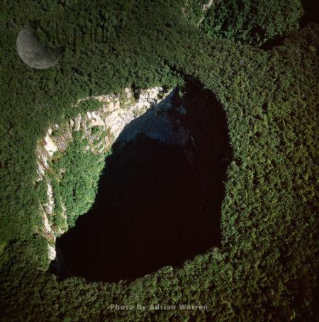 Sarisarinama (Sarisariñama) Sinkhole,  Jaua-Sarisariñama National Park, Bolívar State, Venezuela