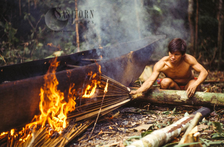 Waorani Indians: Dug-out Canoe Making, Rio Cononaco, Ecuador, 1983
