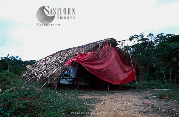Waorani Indians, traditional house in the rainforest, near Rio Cononaco, Ecuador, 1983