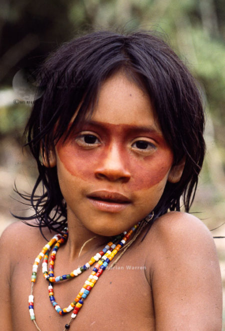 Waorani Indians : Use Of ACHIOTE For Face Decoration, Rio Cononaco, Ecuador, 1983