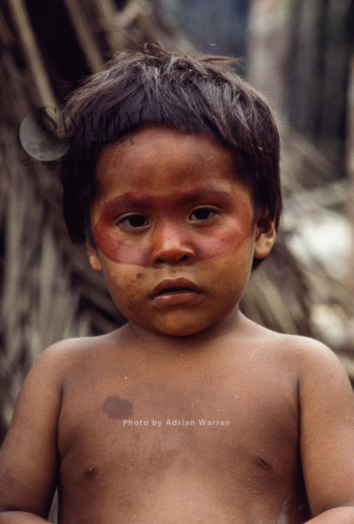 Waorani Indians: Use Of ACHIOTE For Face Decoration, Rio Cononaco, Ecuador, 1983
