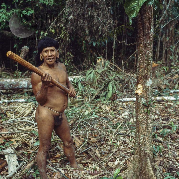 Waorani Indians : Caempaede with Stone Axe, Rio Cononaco, Ecuador, 1983