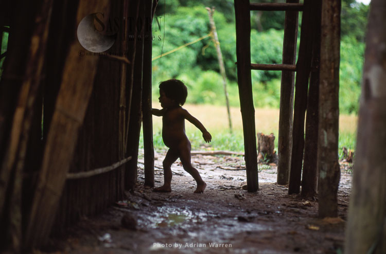 Waorani Indians, A Toddler, Rio Cononaco, Ecuador, 1993