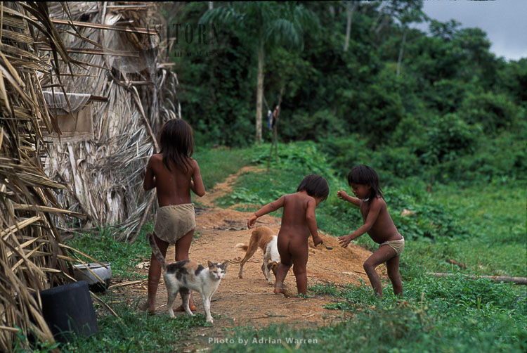 Waorani Indians, Children Playing, Rio Cononaco, Ecuador, 1993