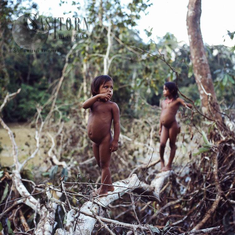 Waorani Indians, children, Rio Cononaco, Ecuador, 1983