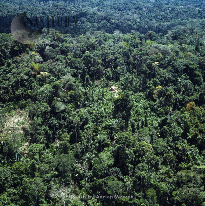 Waorani Indians, traditional settlement in the rainforest, near Rio Cononaco, Ecuador, 1983