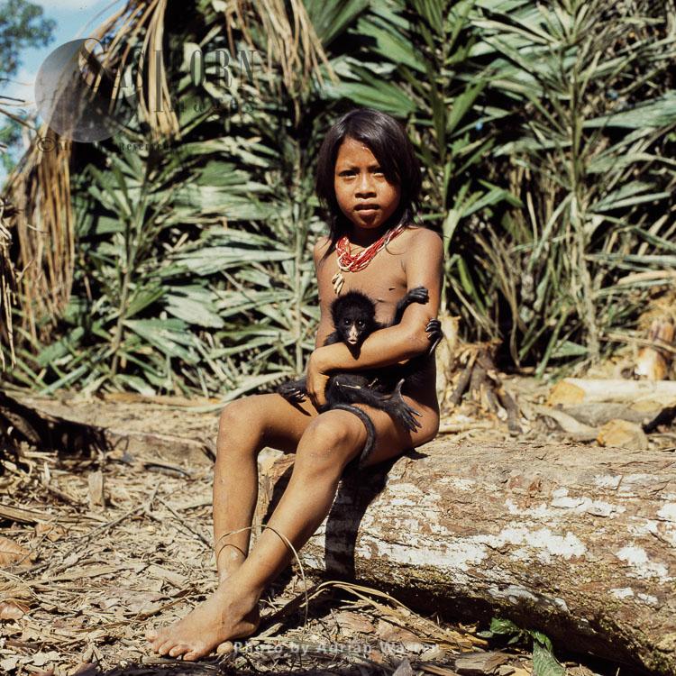Waorani Indians : Girl with a Spider Monkey pet, Rio Cononaco, Ecuador, 1983