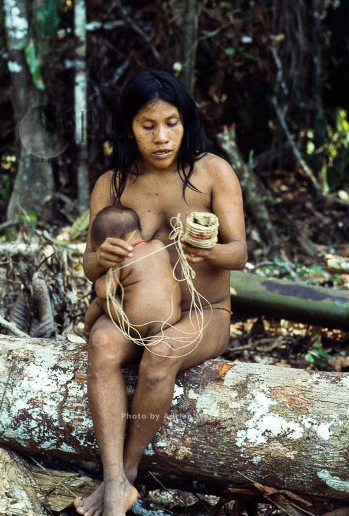 Waorani Indians: Chambira palm fiber made into twine used in making basket, Rio Cononaco, Ecuador