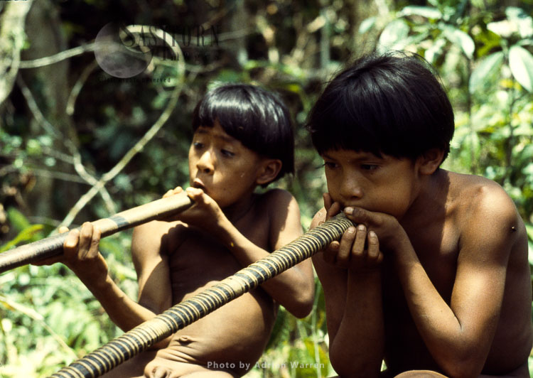 Waorani Indians: Learning How To Use Blow Gun, Rio Cononaco, Ecuador, 1983