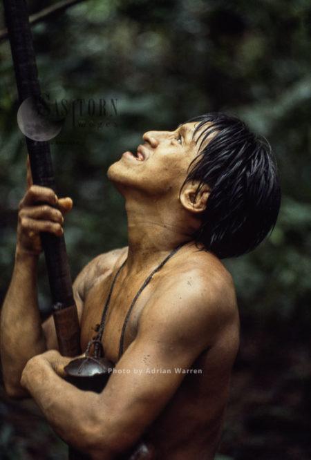 Waorani Indians, Hunting, Rio Cononaco, Ecuador, 1983