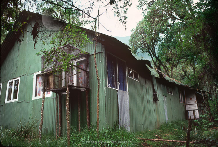 Dian Fossey's Cabin, Karisoke Mountain Gorilla Research Centre, Virunga Volcanoes, Rwanda