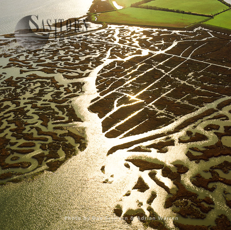 Mud Flats On The River Blackwater, Northey Island, Maldon, Essex