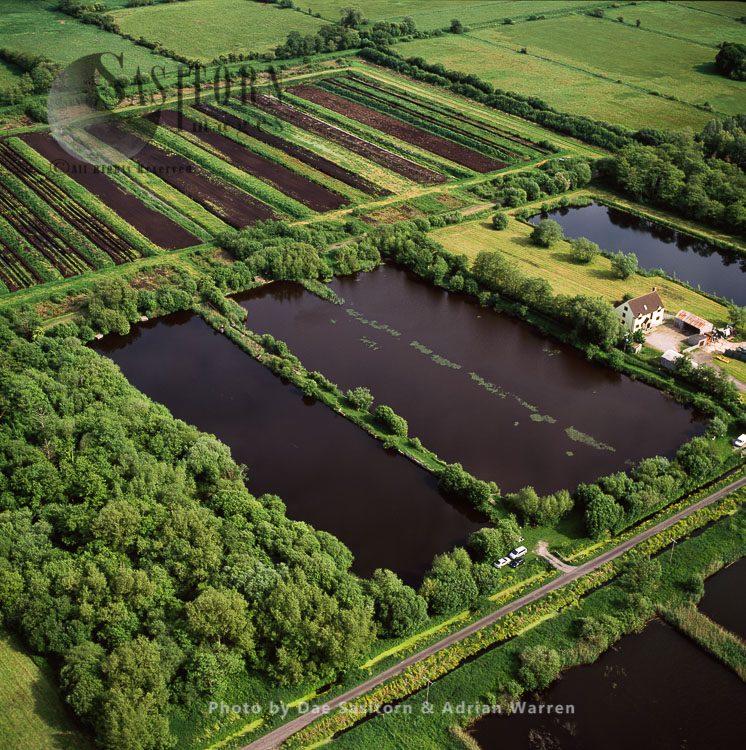 Peat Extraction Site, Somerset Levels, Somerset, England