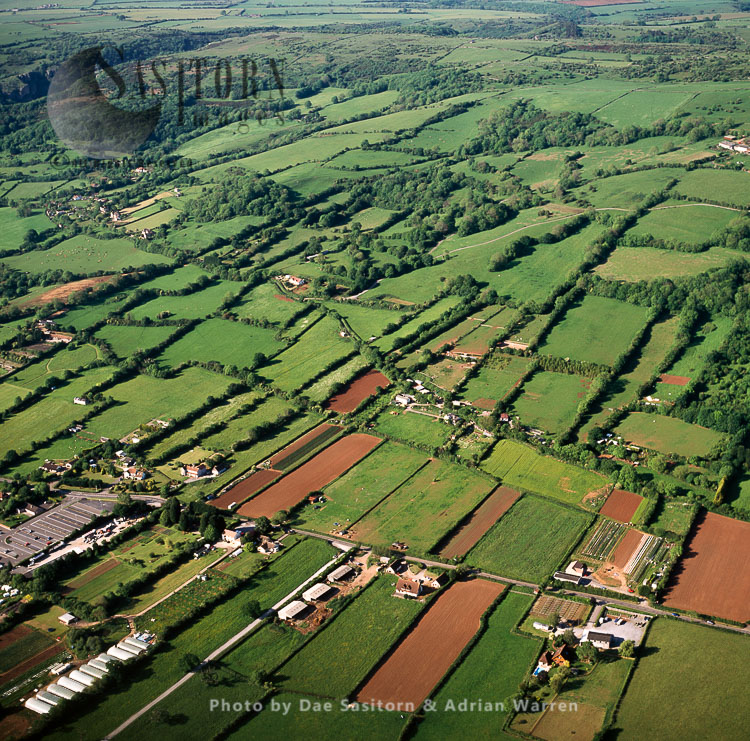 Medieval Field System, Draycott, Somerset
