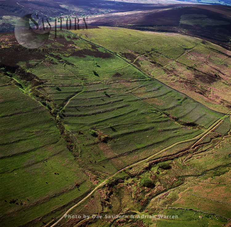 Celtic Field System, Dartmoor, Devon, Southwest England