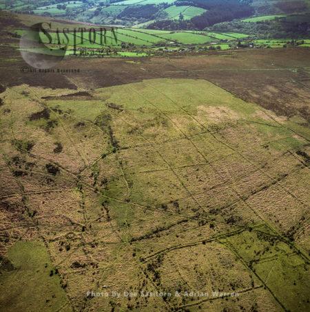 Bronze Age Celtic Field System, Dartmoor