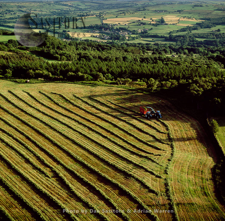 Harvesting Near Fountains Abbey, North Yorkshire, England